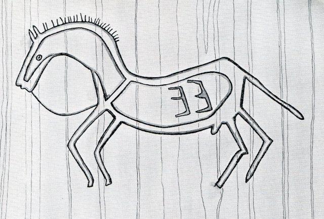 Tyglad häst001